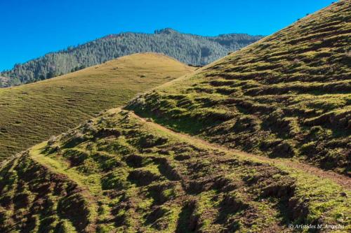 Ruta Cruz Tejeda-Cruz Cabezo-Tilos Moya_20130112